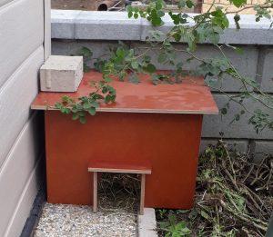 Nützlinge Garten Schnecken Winterschlaf