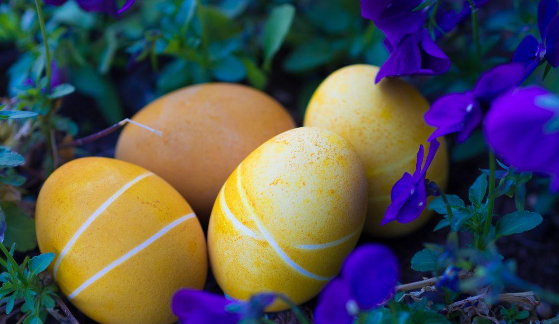 Ostereier natürlich färben mit Kurkuma