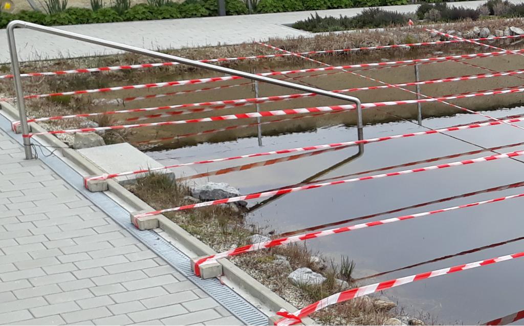 Enten brüten abwehren verscheuchen Garten Wasser Zerkarien Badedermatitis Ausschlag Kot Würmer
